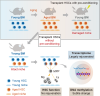 Stembook: Discovery of Aging Mechanism for Hematopoietic Stem Cells
